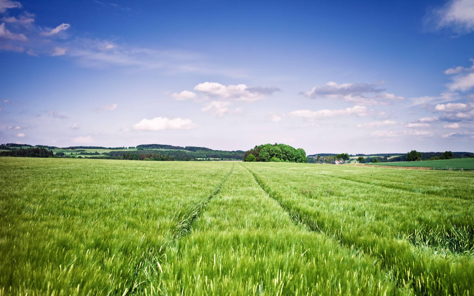 GROZA - Investeringsmogelijkheden in grond